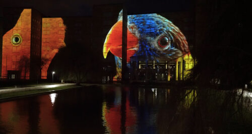 Preview image of Facing Extinction: Projection Mapping